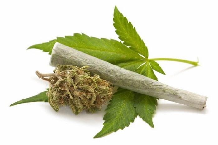 Анаша: вред и польза наркотика, как действует на организм  Анаша