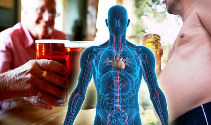 Сколько в крови держится пиво
